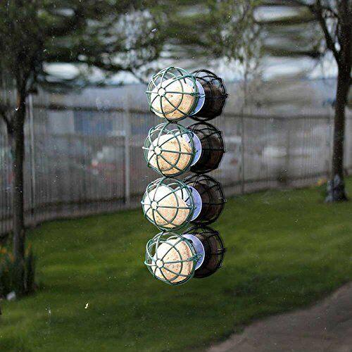 Wild Bird Feeder suspendus ou Fenêtre Ventouse Monté 4 Basket-Ball Fat Ball du suif