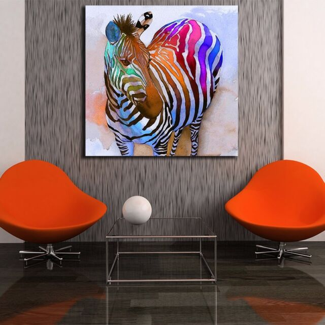 30×30×3cm Colorful Zebra Stretched Canvas Print Framed Wall Art Decor Painting