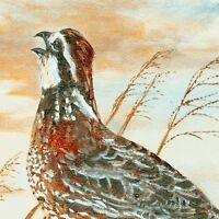 Quail Run From South Sea Imports - Multi Craft Panel