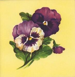 Vintage purple pansies white pansy flowers garden lithograph note image is loading vintage purple pansies white pansy flowers garden lithograph mightylinksfo