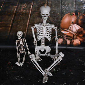 15-40cm-Poseable-Full-Life-Size-Human-Skeleton-Halloween-Decoration-Party-Prop3C