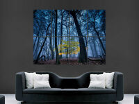 BEAUTIFUL FOREST TREES WILD GIANT WALL POSTER ART PICTURE PRINT LARGE HUGE