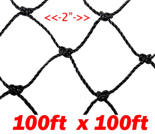"2/"" Mesh Hole Extra Large 100ft X100ft Anti Bird Poultry Farm Game Fish Netting"