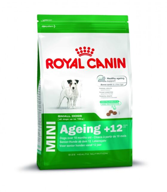 Royal Canin Size Mini Ageing +12 | 1,5kg Futter für ältere Hunde