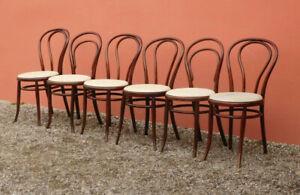 Dettagli su Sei sedie Thonet in legno con seduta imbottita, metà '900!