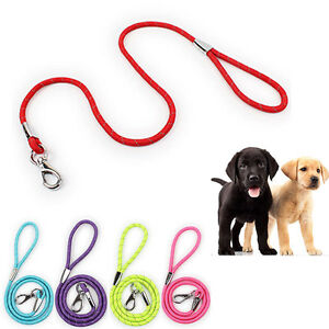 Pet Dog Nylon Rope Training Leash Lead Strap Alloy Buckle Traction Collar Belt