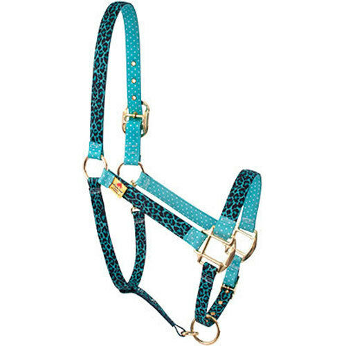 Teal Leopard w blueee Polka Dots Accent Fashion Horse Halter