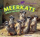 Meerkats: Life in the Mob by Willow Clark (Hardback, 2011)