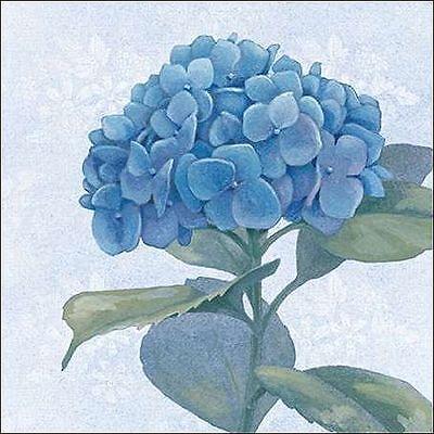 Beth Grove: Blue Hydrangea IV Keilrahmen-Bild Leinwand Blumen blau Blüte modern