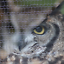 thumbnail 12 - Zoo-Animal-Mesh-Aviary-Mesh-Knitted-Stainless-Steel-Wire-Mesh-ClearMesh