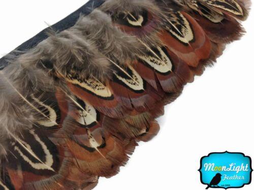 Pheasant Feathers 1 Yard Almond Pheasant Plumage Feather Trim