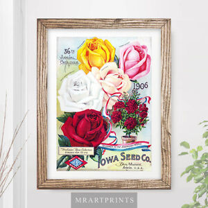 image is loading vintage-flowers-art-print-poster-wild-red-roses-