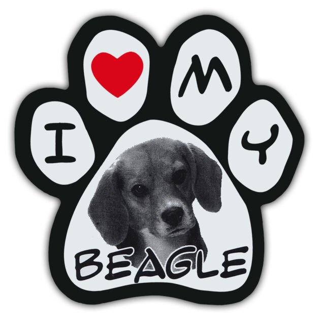 Picture Paws | Dog Paw Shaped Magnets: I LOVE MY BEAGLE | Car Magnet