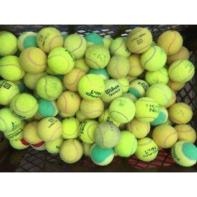 20 Tennisbälle bunt grün Bambini Tennis Training Hundespielzeug Kindergarten