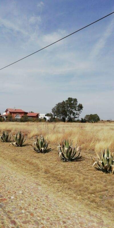 Terrenos en Venta en San Carlos, Aguascalientes.