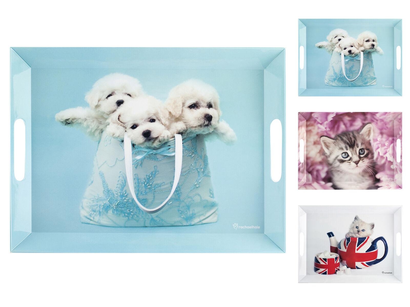H&H Set 3 Vassoi Melamina Cats&Dogs 38X51 Complemento per la casa