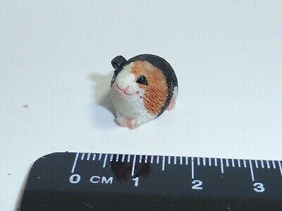 1:12 scale Guinea Pig c2 maison de poupées miniature Pet Accessory