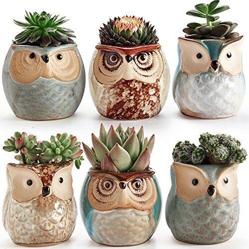 Owl Pot Ceramic Set Succulent Plant Flower Container Planter 6 Pack Garden  Decor
