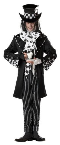 Dark Mad Hatter Alice In Wonderland Adult Men Costume