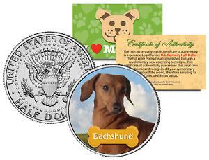 DACHSHUND-Dog-JFK-Kennedy-Half-Dollar-U-S-Colorized-Coin-Limited-Edition