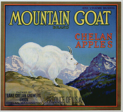 MOUNTAIN GOAT~ORIGINAL 1930s CHELAN WASHINGTON AUTHENTIC APPLE FRUIT CRATE LABEL