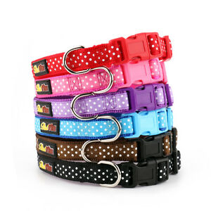Polka-Dot-Dog-Collar-and-Matching-Lead-Set-Puppy-and-Dog-Spotti-by-RichPaw