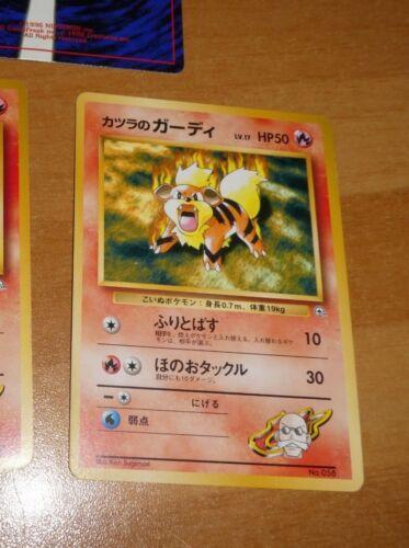 Pokemon japanese card pocket card Growlithe 058 lv.17 no rarity symbol nm