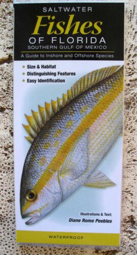 NEW FISHES OF FLORIDA COLLECTIBLE WATERPROOF REFERENCE FIELD GUIDE TAXIDERMY