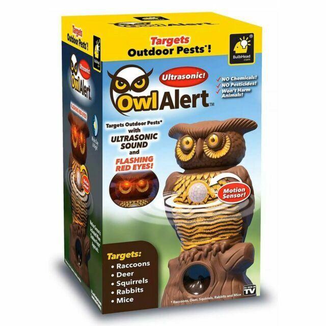 BulbHead Ultrasonic Owl Alert Statue