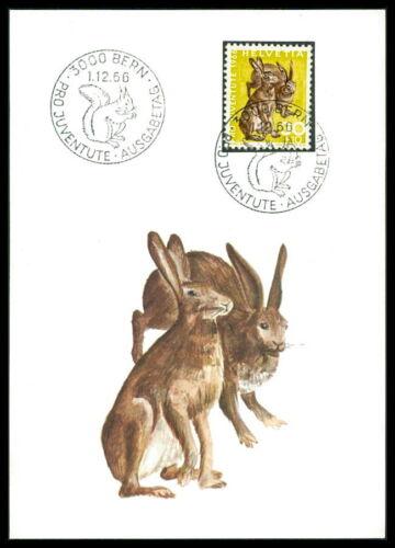 SWIZTERLAND MK 1966 ANIMALS RABBIT LIEVRE HASE CARTE MAXIMUM CARD MC CM m983