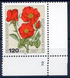 Bund-BRD-1153-Ecke-4-FB-2-120-60-Gartenrosen-Postfrisch-1982