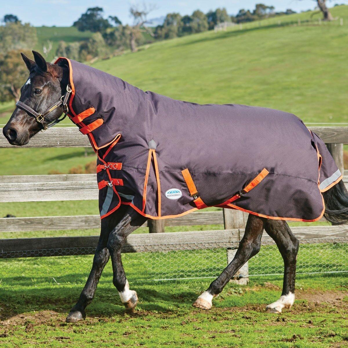 Weatherbeeta comfitec PLUS COMBO dinamico collo Pony Tappeto Affluenza Alle Urne, medio, tutte le taglie