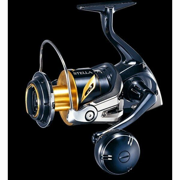 Shimano 19 Stella SW 8000PG From Japan