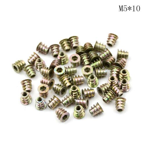 50 M4 M5 M6 Zink Sechskantschraube Einschraubmutter für HolzLE