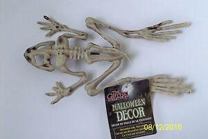 FROG SKELETON SPOOKY BONEZ DEAD ANIMAL PROP DECORATION SS70424