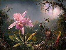 Pink Orchid & 3 Brazilian Hummingbirds~counted cross stitch pattern #1693~Chart