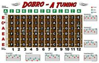 Dobro Fretboard Wall Chart Resonator Guitar Poster A Tuning Notes Rolls
