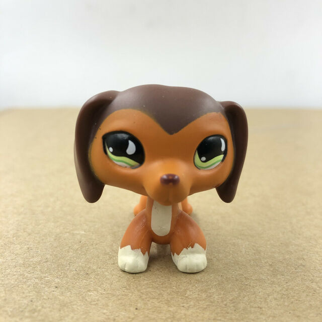 1892 Littlest Pet Shop Tan Chihuahua Puppy Dog Purple Eye Lps Toy For Sale Online Ebay