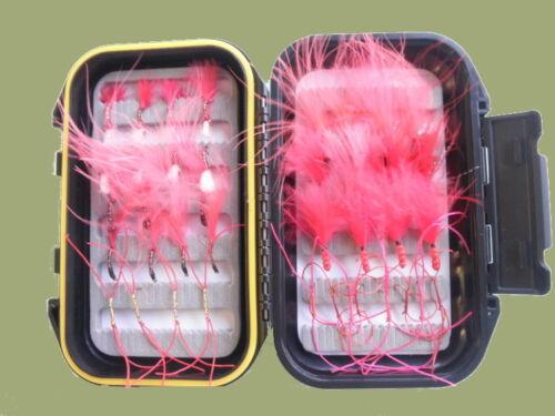 Blood Worm Trote Mosche, 40 per COFANETTO, vari modelli, Bloodworms BOX32