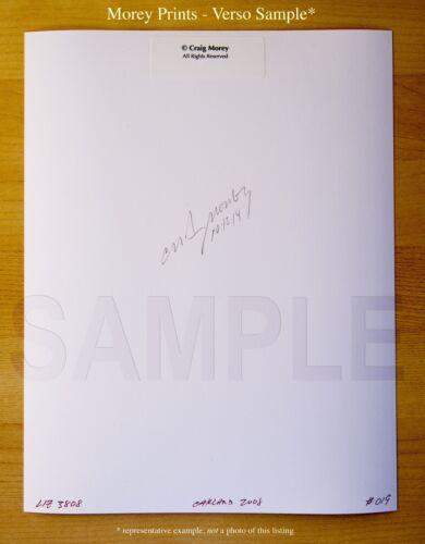 signed 8.5x11 color photo by Craig Morey Dita C17 Dita von Teese Fine Art Nude