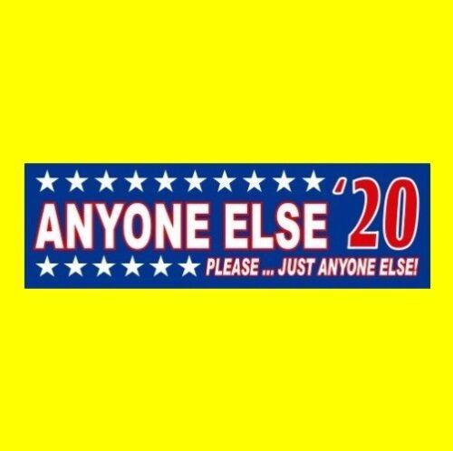 Funny ANYONE ELSE '20 Democratic ANTI DONALD TRUMP BUMPER STICKER decal 2020