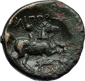 Philip-II-359BC-Olympic-Games-HORSE-Race-WIN-Macedonia-Ancient-Greek-Coin-i69912