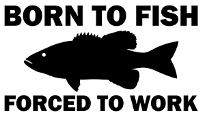 Born To Go Fishing Forced To Work Funny Car Window Bumper Sticker Vinyl Decal