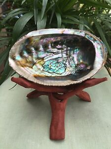 Large-Rainbow-Abalone-Shell-With-Tripod-Wood-Stand-Smudging-Decor-JewelryDisplay