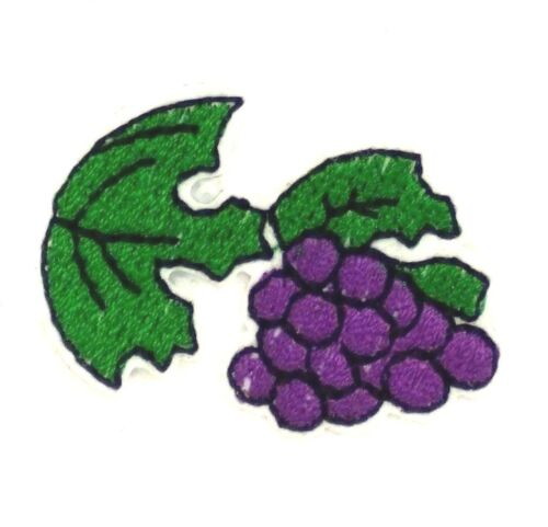 Cute Fruit small Grape Embroidered Patch Sewing Iron on Shirt Badge Clothes 109