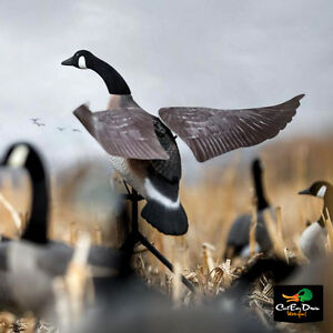 NEW-LUCKY-DUCK-FLAPPER-CANADA-GOOSE-FLAPPING-WING-MOTION-DECOY-WITH-REMOTE
