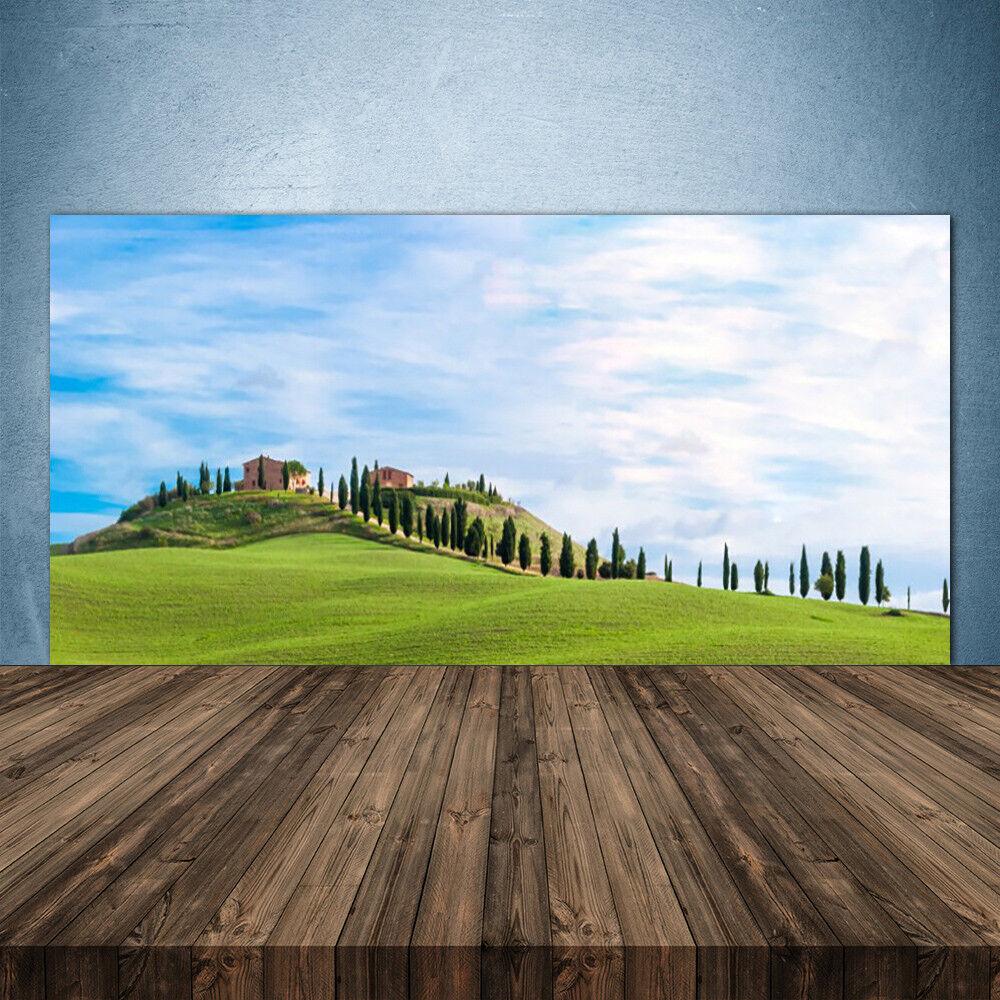 Crédence de cuisine en verre Panneau 140x70 Paysage Arbres Prairie