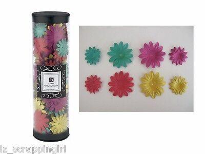 16) ALYSSA Prima Daisy Crazy Flowers Daisies ROSE PINK YELLOW GREEN PURPLE girls
