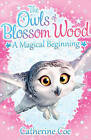 The Owls of Blossom Wood: A Magical Beginning by Catherine Coe (Paperback, 2015)