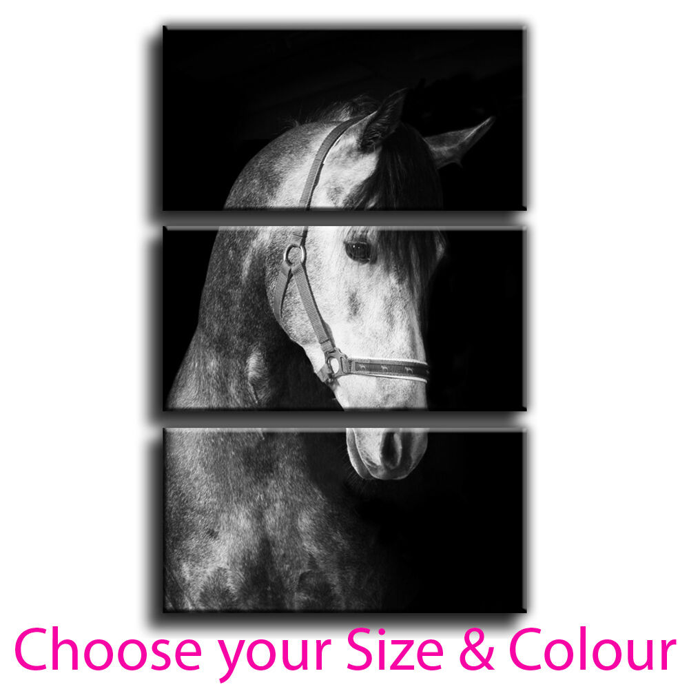 Horse Canvas Print Framed Wall Art Treble Picture 2 Gallery Gradei